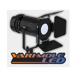 Variable Color LED 100W